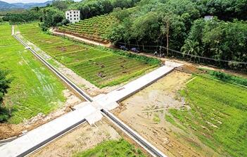 上半年三亚建设高标准农田4000亩 助力农民增收