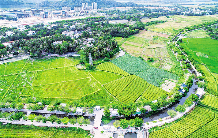 美丽乡村·海南样本——三亚青塘村