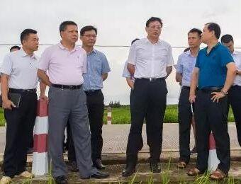 刘登山到文昌罗豆农场和锦山镇调研产业发展