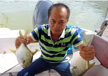 老国企转型养鱼获丰收 无奈50万斤金鲳鱼滞销