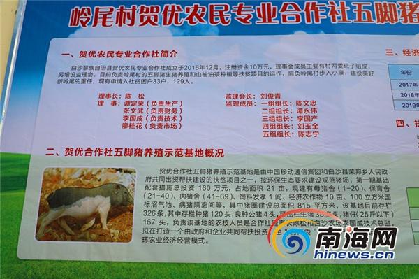 中国移动集团副总裁董昕到白沙开展扶贫调研www.js637.com点击进入官网