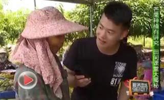 海南省脱贫致富电视夜校第四十六课