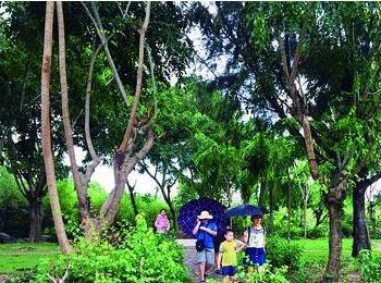 三亚收回7个公园绿地免费开放 完成24项工程