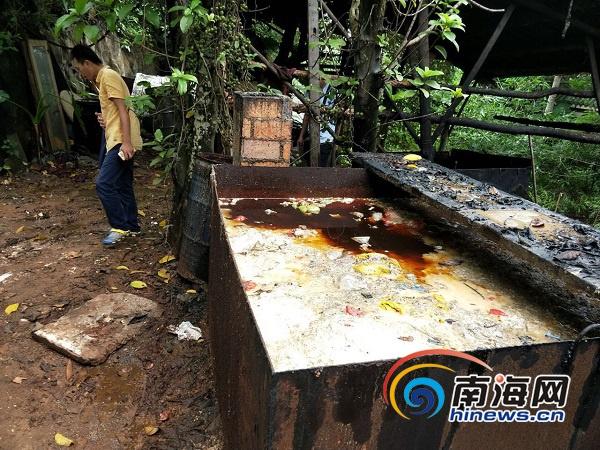 海口非法地沟油加工点暗藏密林 破坏周边生态环境