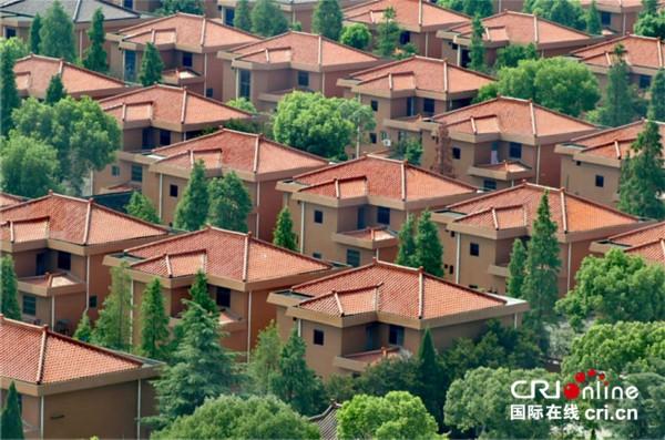 华西村村民别墅 让村民居住条件得到改善 增加幸福感图片