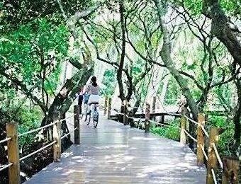 文昌八门湾栈道拆除 景区内停止旅游经营活动