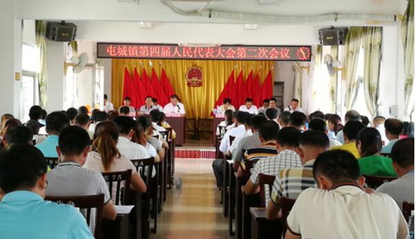 屯昌屯城镇召开第四届人民代表大会第二次会议