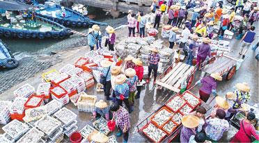 儋州白马井中心渔港渔市火 一派热闹景象
