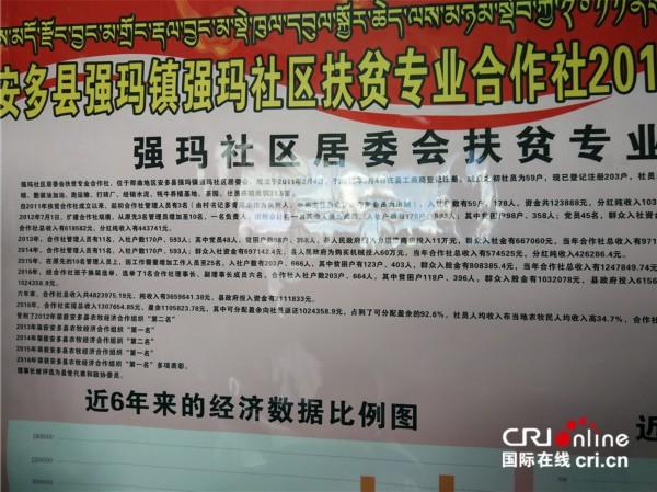 强玛镇的扶贫合作组织就位于居委会院内   国际在线消息(记者 殷欣):西藏那曲安多县强玛镇地处平均海拔4500米以上的藏北羌塘大草原,该镇2016年初精准识别、建档立卡贫困户总户数230户,占全镇总户数的18.44%,人数919人,占全镇人口的17.44%。   通过建立贫困户入股参与的扶贫经济合作组织发展机制,将建档立卡贫困户230户919人全部纳入该镇登记注册的两家合作组织中。   近两年,两家合作组织合作社以母羊母牛养殖基地、牧民施工队、茶馆、商店、奶制品加工、民族手工纺织等经营业务,连续实现年终