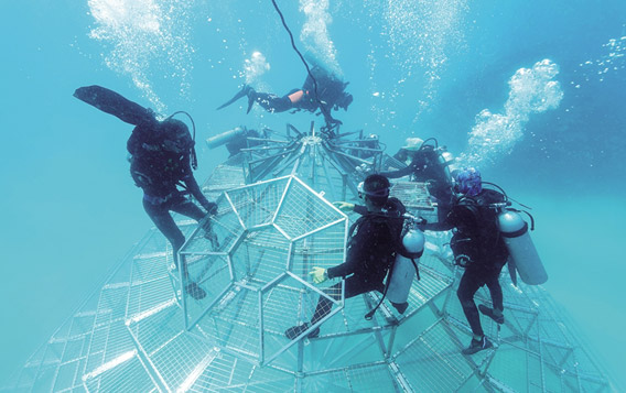 陵水分界洲岛海底搭建2座珊瑚培育铁塔