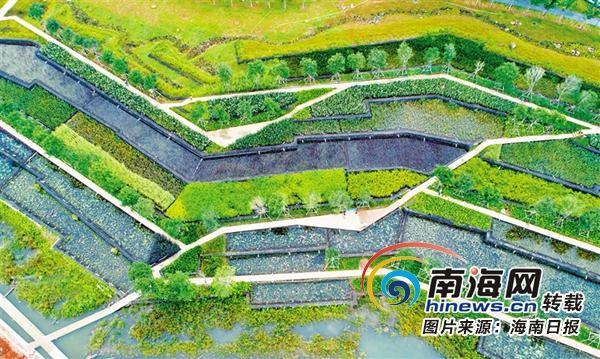 梯田景观设计平面图