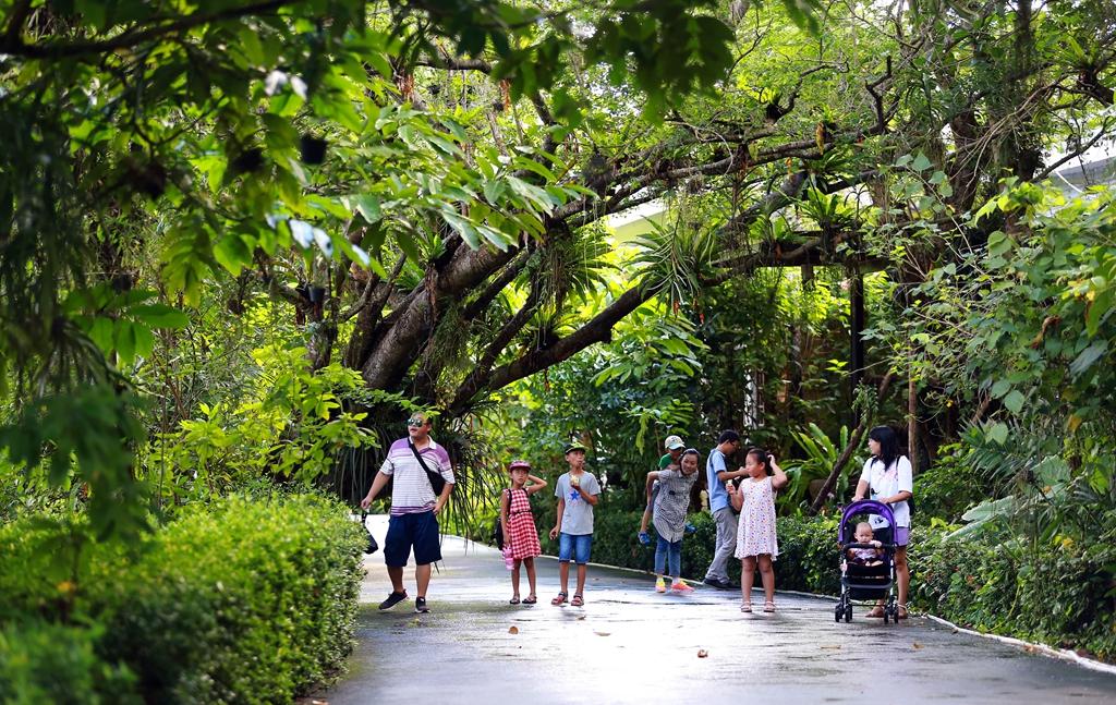 万宁兴隆热带花园良好生态令游客心旷神怡