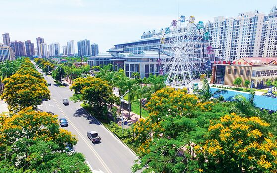 儋州加快城市道路基础设施改建 已投资逾5000万元