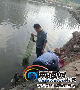 """注意!海口金牛湖治水吃了点""""药"""" 湖里的鱼千万别吃"""