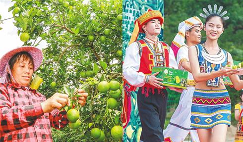 """""""奔格内""""绿橙旅游季活动启动 六大活动精彩纷呈"""