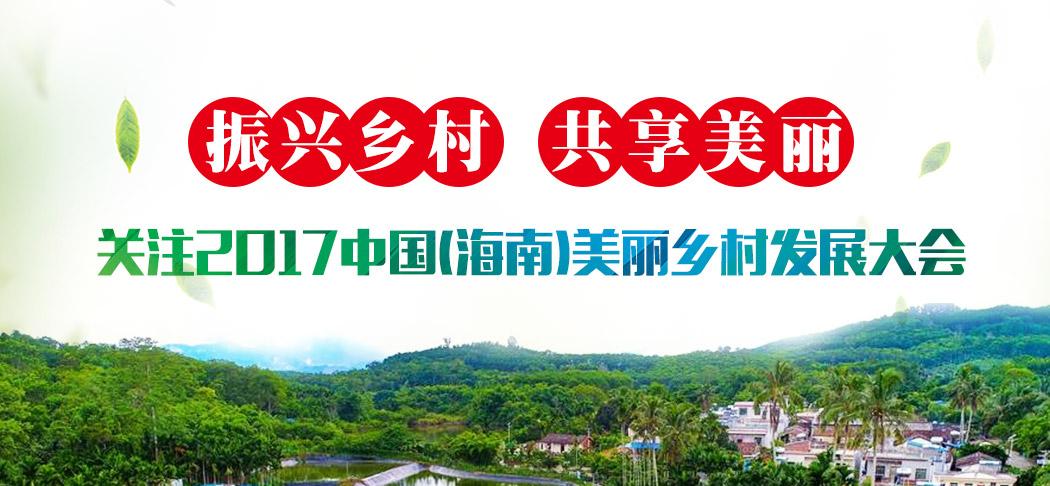 百年黄皮园彰显厚重文化 儋州南吉村名气越来越大