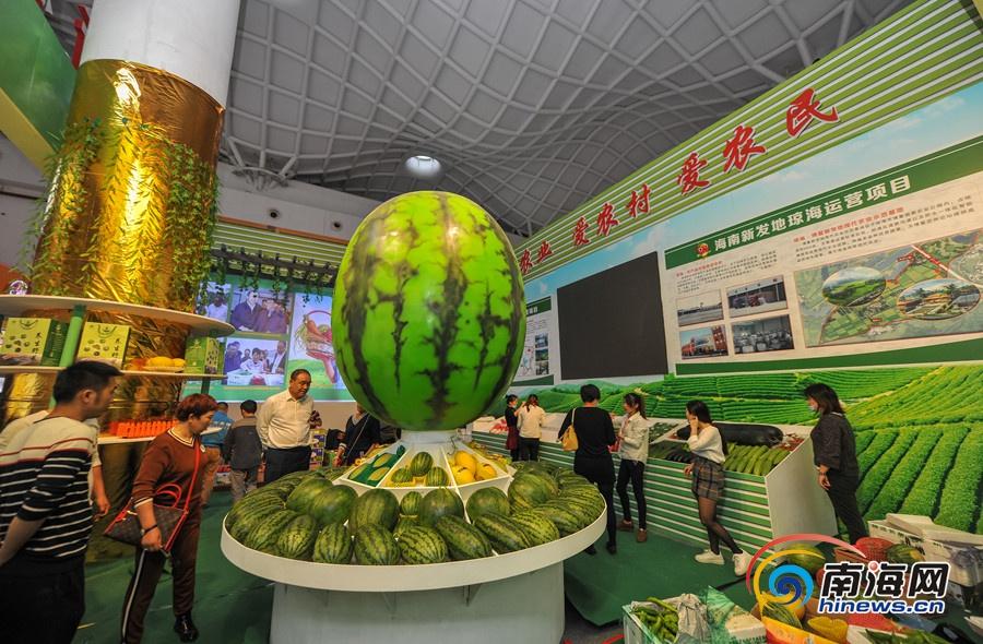 2017年中国(海南)国际热带农产品冬季交易会展区瓜果飘香.