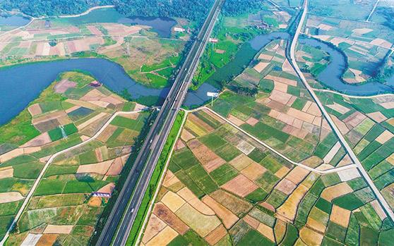 """海口南渡江畔绿""""地毯"""" 铺出产业新路"""