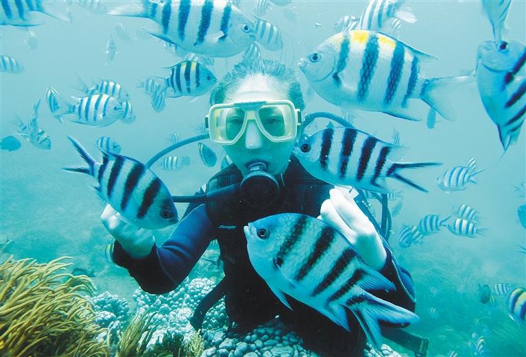 """三亚蜈支洲岛保护修复珊瑚礁生态系统 打造曼妙""""水下王国"""""""