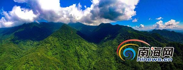 海南逝世守生态红线 保护五指山原始丛林