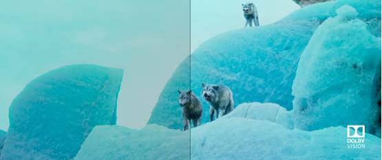 百余部杜比视界 HDR 影片上线 爱奇艺全面升级用户观影体验