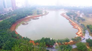 海口万绿园内海种上红树林 月底前对市民开放