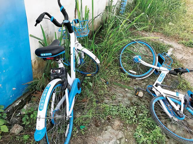 哈罗共享单车入驻10多天失踪逾300辆 企业没