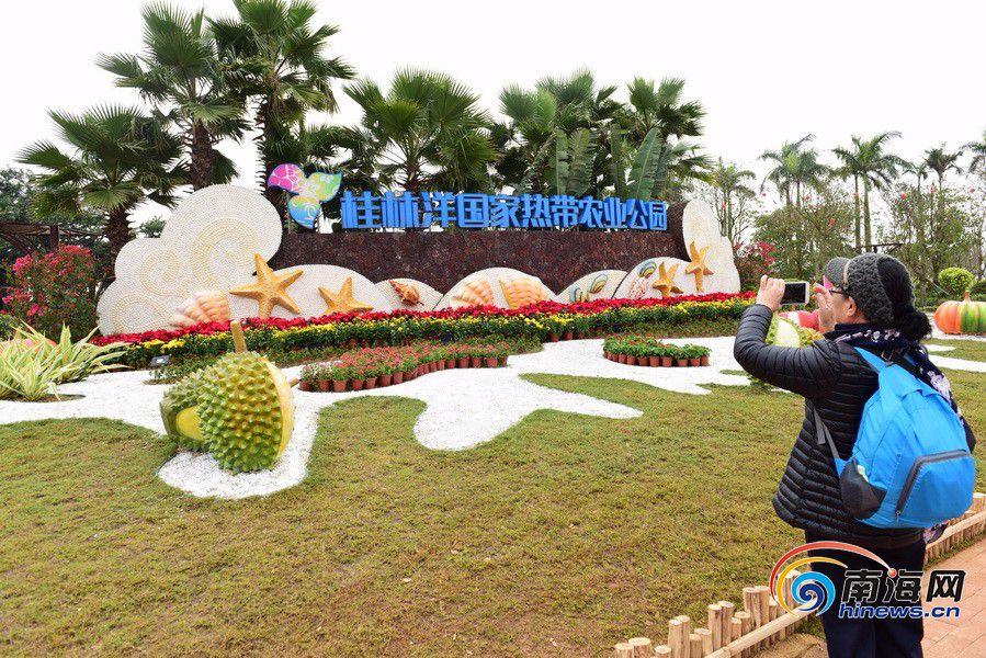 桂林洋国家热带农业公园正式开园 开放6个项目