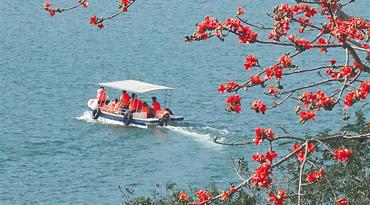 春节,各地游客畅玩海南