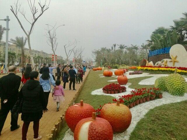 """桂林洋国家热带农业公园春节游客""""爆棚"""""""