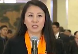 杨扬:中国军团力争参加所有冬奥项目