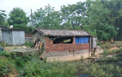 儋州百户村民守着自来水公司却喝不上自来水 为啥?