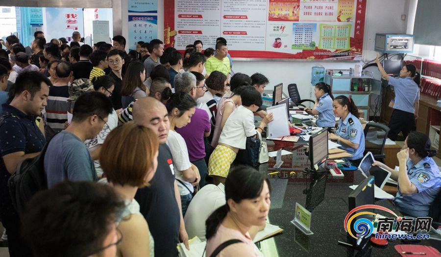 海南实施人价格龙华平均中心受理每天办证君新政旺多家具图片