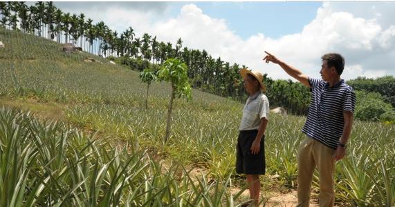 万宁:以现场调解方式快速推进农垦土地确权 保护多方利益