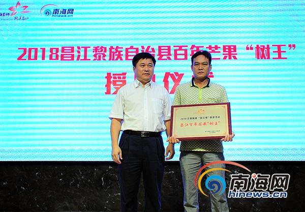 "<b>昌江325岁芒果""树王""喜获认证被授牌保护</b>"