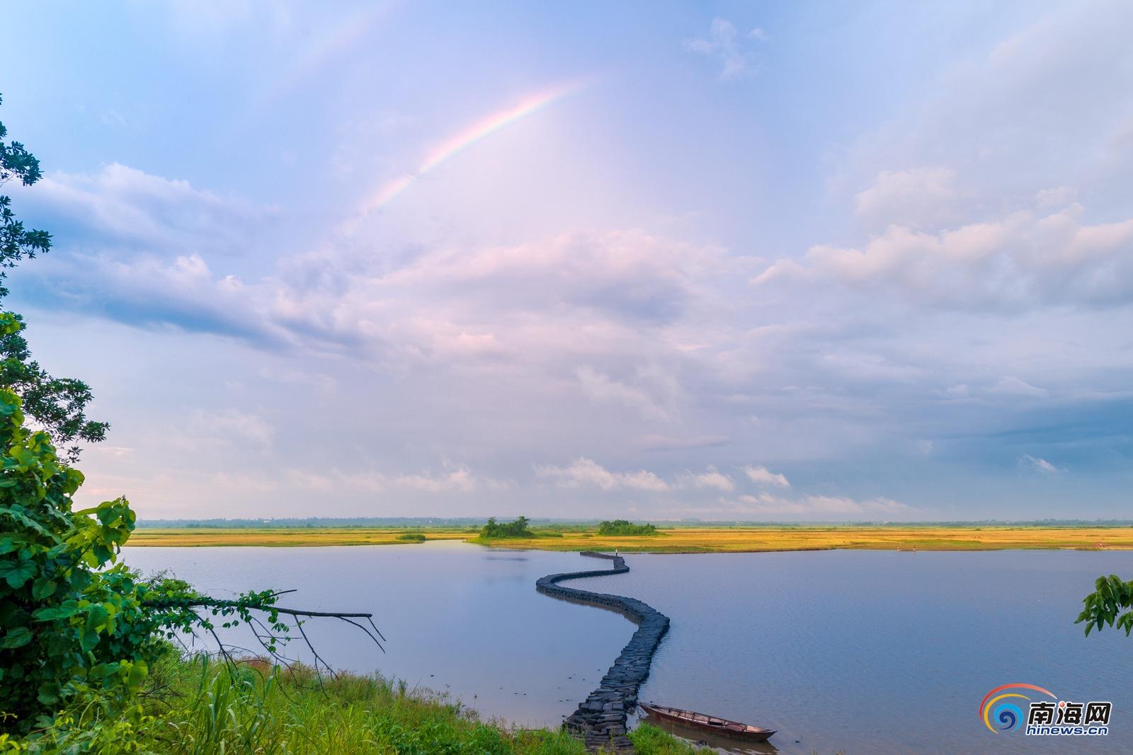 南海网 新闻中心 海南新闻 独家报道    《湿地鸟类(组照)》 邢增锐