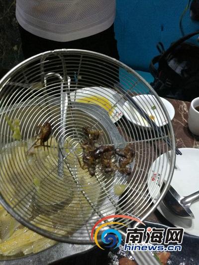 两名顾客吃火锅捞出8只蟑螂?海口警方及食药监部门介入调查