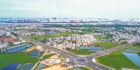 海口江东新区:路网建设稳步推进
