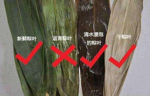 <b>海南岛民切勿购买粽叶颜色不正常的粽子有中毒风险</b>