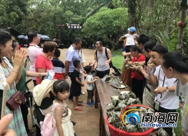 浓浓端午情海南热带野生动植物园举办吃粽子比赛