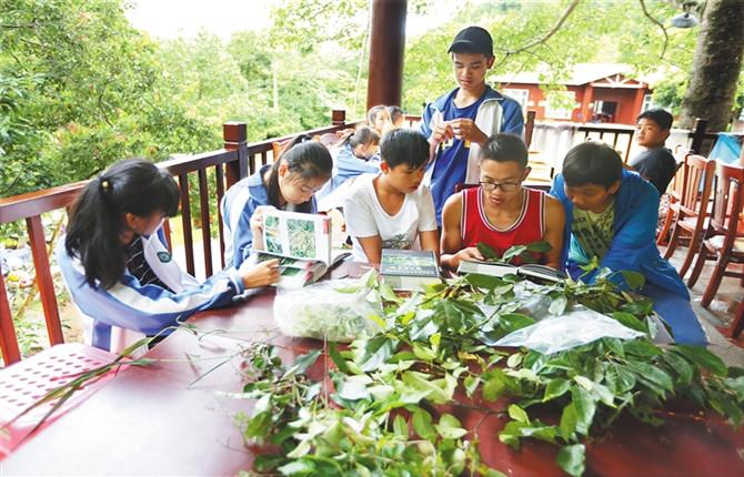 去白沙观看鸟类,识别植物——鹦哥岭,自然教育大课堂