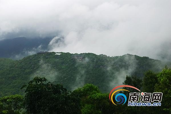 秋雨送爽三亚亚龙湾热带天堂景区现雨林雾景