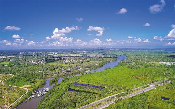 文昌霞洞湖人工湿地建设 让污水变清流
