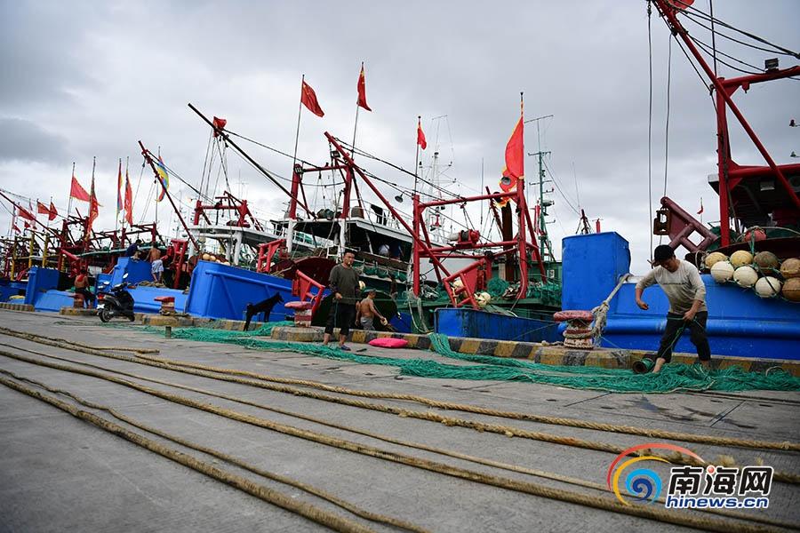 <b>8月16日开渔!三亚渔民整装待发迎接耕海牧渔</b>