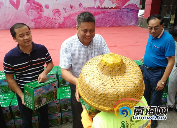 海南省人大代表黄桂提:购买10万斤中和香芋赠给儋州一线工作者