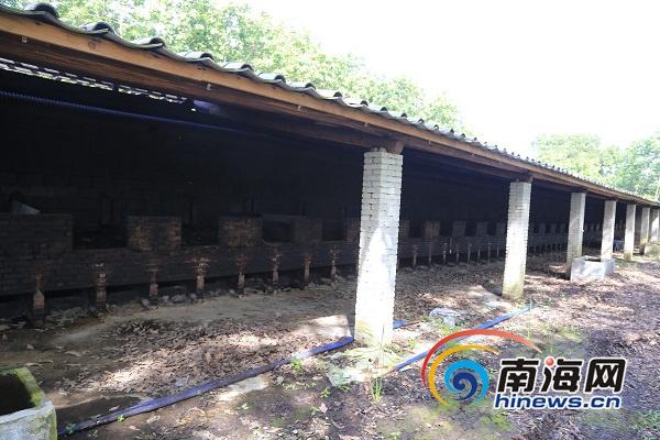定安依法拆除一处槟榔黑果加工厂拆除建筑物总面积1500平方米