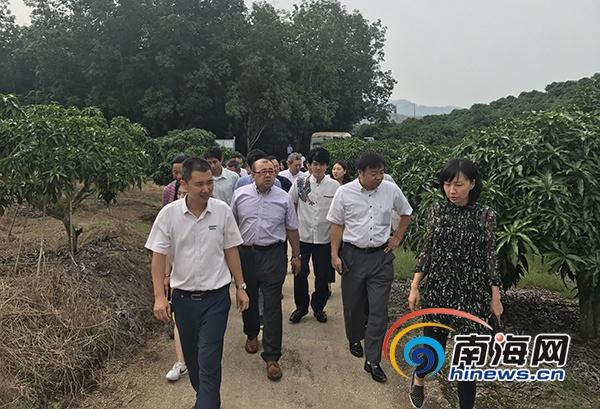 日本企业考察团赴乐东考察丝路国家国花博览园项目