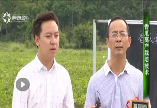 海南省脱贫致富电视夜校第九十九课