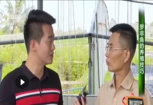 海南省脱贫致富电视夜校第九十五课