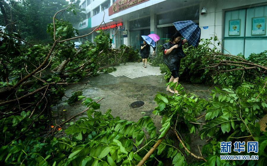 """抗击最强台风""""山竹"""" 这些地方在行动"""